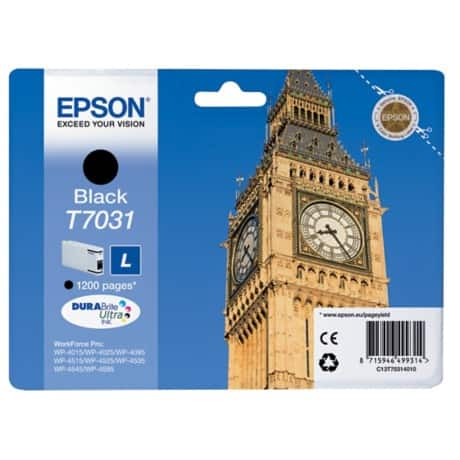 Epson T7031 Original Ink Cartridge C13T70314010 Black