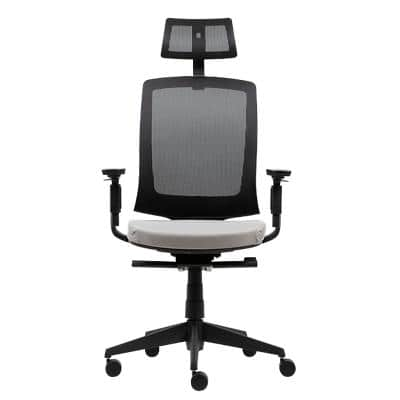 Realspace Ergonomic Office Chair Karl Ergo Plus Mesh, Fabric Multicolour