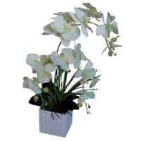 Artificial Plant Orchids Green, White